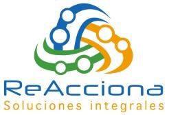 Reacciona   Ingeniería Gestión de Proyectos   Lima Perú